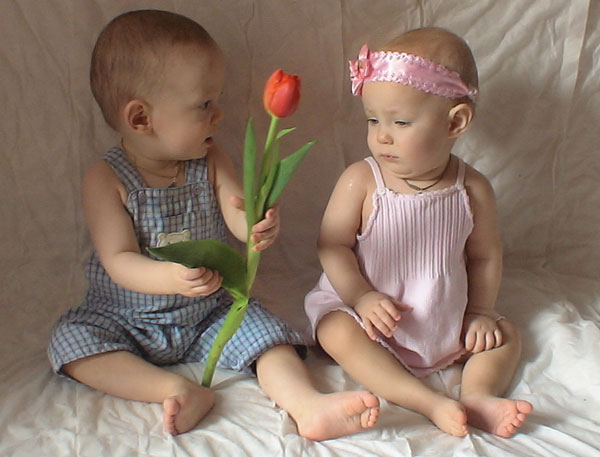 Поздравления с близнецами мальчик и девочка