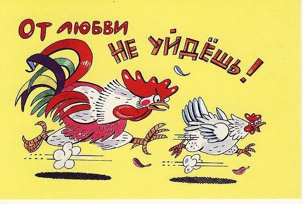 Год петуха открытки прикольные с поздравлениями