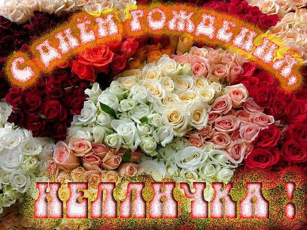 Поздравление от донны розы следует взять