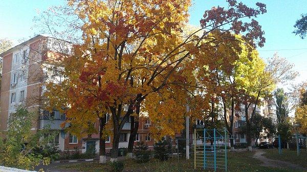 А это осень в Белгороде
