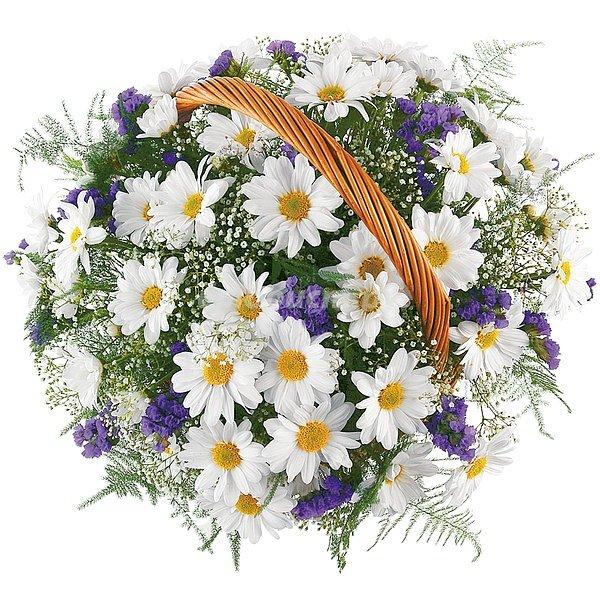 Для, картинки с полевыми цветами красивые букеты с надписями для тебя